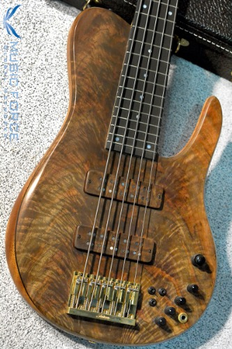 Fodera Custom Imperial Elite 5 MG Shape-1pc Crotch Walnut Top w/Ebony FB(2017년산/신품)