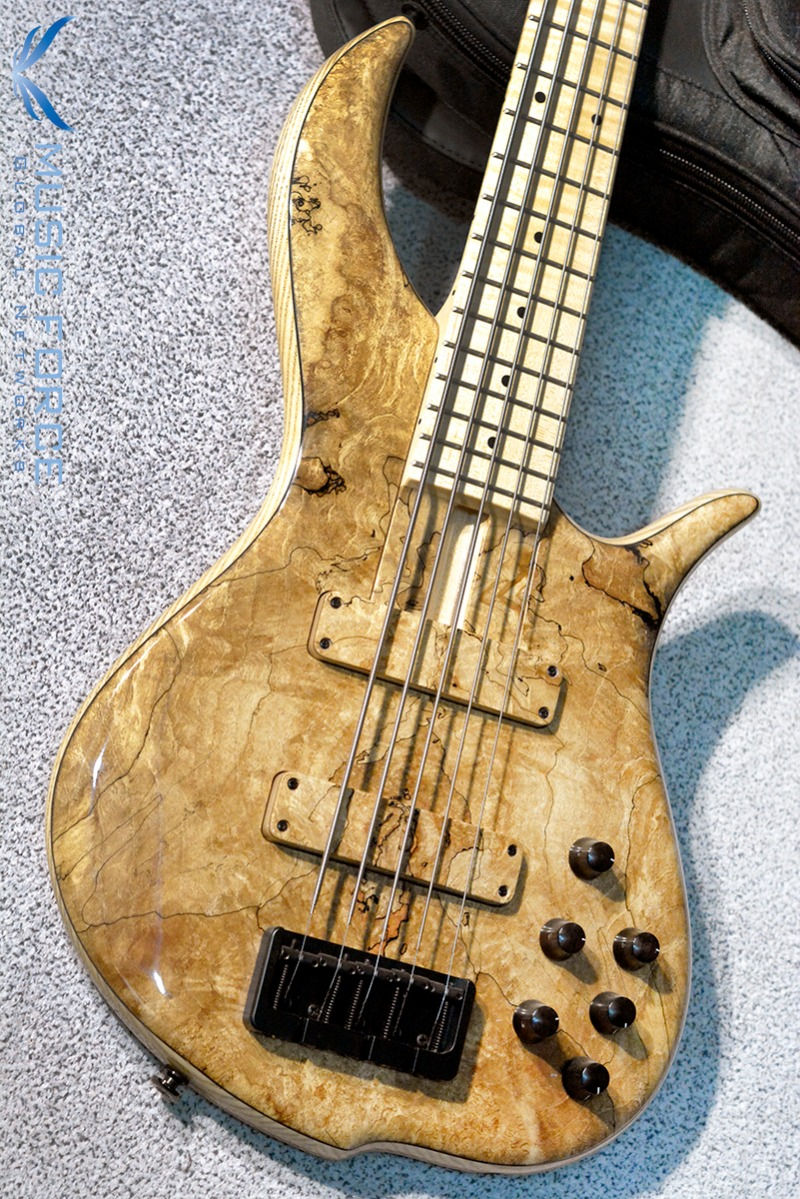 F-Bass BN5 Spalted Maple Top w/Flame Maple FB & Black HW(2017년산/신품)