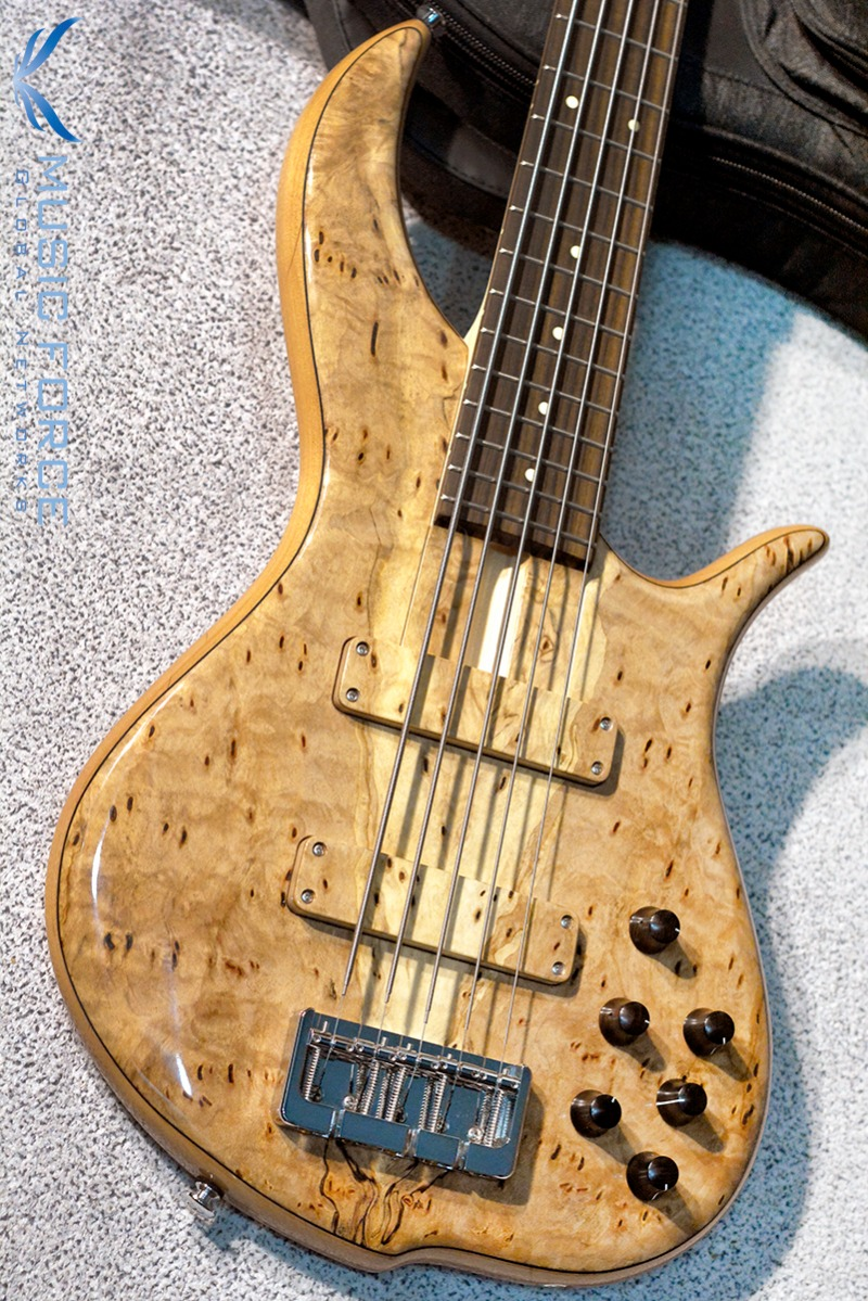 F-Bass BN5 Pecky Spalted Burl Maple Top w/Indian Rosewood FB(2017년산/신품)
