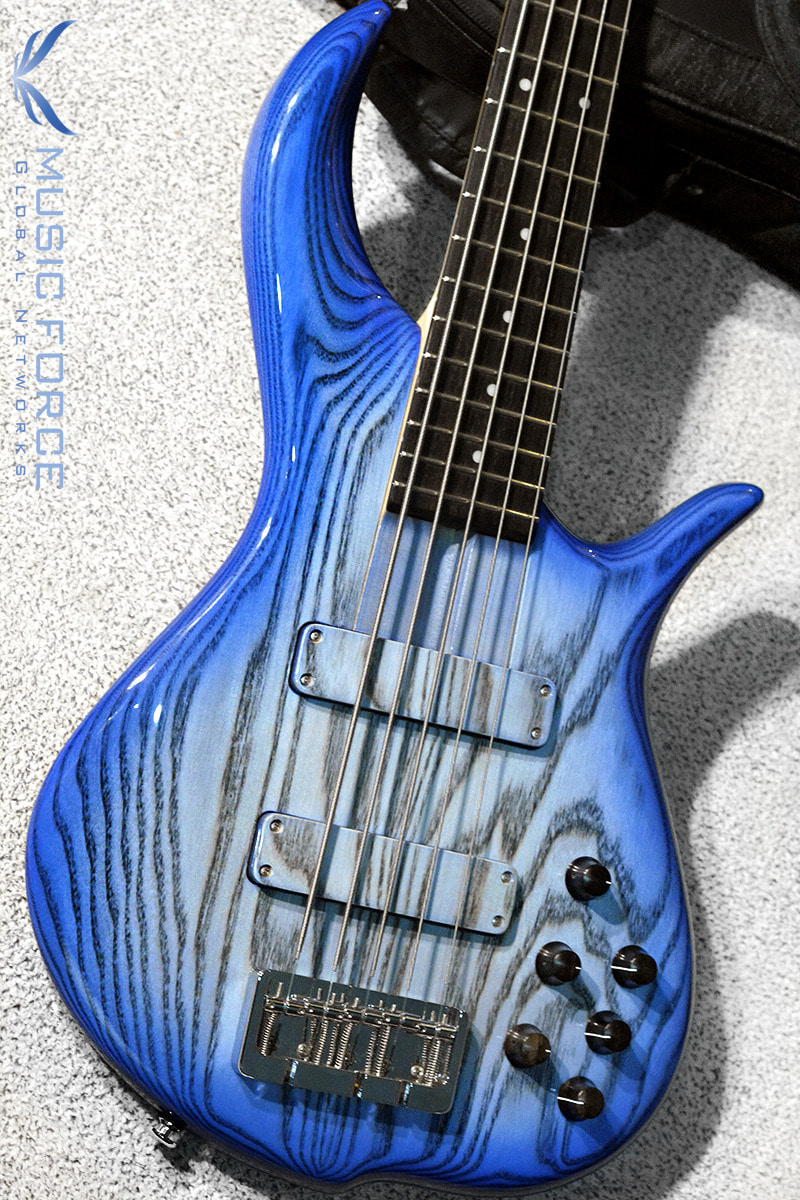 F-Bass BN5 Pale Blue Burst Gloss-Black Grain w/Macassar Ebony FB(2018년산/신품)