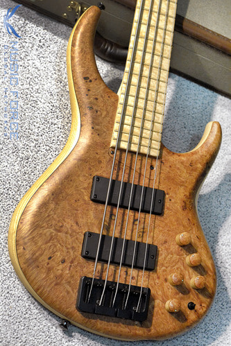 MTD 535-24 US Custom Bass Ash Body-Maple Burl Top w/Birdseye Maple FB(2017년산/신품)